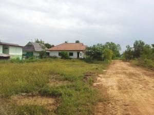 Udon Neighbor